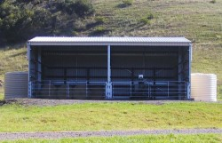 Horse Shelters | Wide Span Sheds